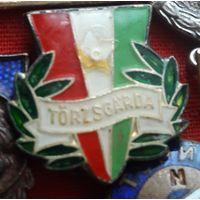 Знак комсомола Венгрия