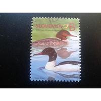 Словения 2014 стандарт, птицы