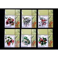 Молдова 2013 г 823-828 Флора Ягоды Стандарт  Полная серия - 6 марок Угол