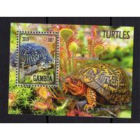 MNH - Черепахи - животные - фауна - зубчатый - 2019 - Гамбия