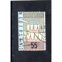 Нидерланды.Ми-1108.Здоровый набор зубов и стоматологического зеркала. Серия: Стоматологический Образование.1977.