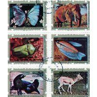 Гвинея Экваториальная.Животные. С надпечаткой - 200 лет независимости США. 1976. Блок.