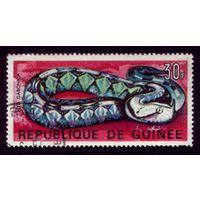 1 марка 1967 год Гвинея Змей 432
