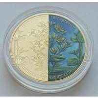 Зверобой четырехкрылый, 20 рублей 2013, серебро, Ag 925, #BelCoinArt