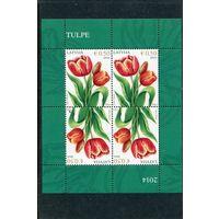 Латвия. Тюльпаны, малый лист
