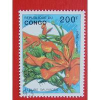 Конго 1993г.  Флора.