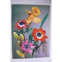 Цветы; 1972, подписана (ГДР).