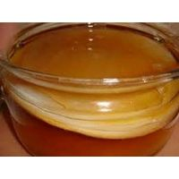 Чайный гриб (также японский или маньчжурский гриб)