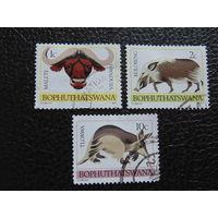 Ботсвана 1977г. Фауна.