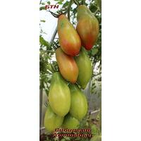 Семена томата Сибирский Хоттабыч