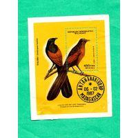 Блок-марка-Мадагаскар- 1987 Endangered Wildlife-Находящиеся под угрозой исчезновения
