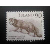 Исландия 1980 лиса
