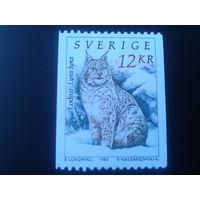 Швеция 1993 рысь