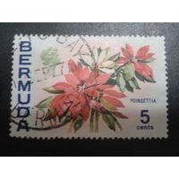 Бермуды, колония Англии 1970 Цветы