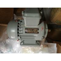 АПН-012/2-М2101 Электродвигатель трехфазный асинхронный