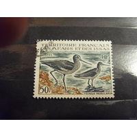 1967 Французская колония Территория Афаров и Иссу фауна птицы (5-4)
