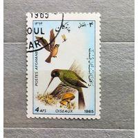 Афганистан.1985г.Птицы.
