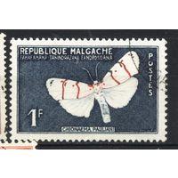 Мадагаскар. Малагасийская республика. 1960 Фауна бабочка (АНД