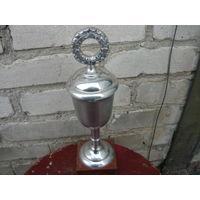 Кубок посвящённый спорту