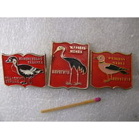 Значки. Птицы. Берегите. Краснозобая казарка, журавль-монах, розовая чайка. цена за 1 шт.