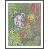 Ангола 2000 Фауна. Обезьяны, блок
