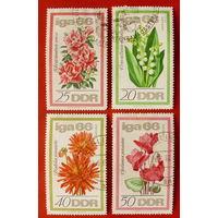 ГДР. Цветы ( 3 марки ) 1966 года.