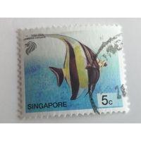Сингапур 2001. Морская жизнь