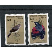 Андорра французская. Птицы
