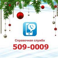 509-0009 - А1 ИДЕАЛЬНЫЙ для СПРАВОЧНОЙ службы и не только.