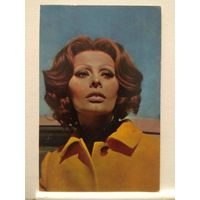 Софи Лорен. 1975