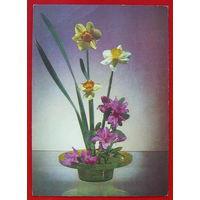 Цветы. Чистая. 1978 года. Якименко.