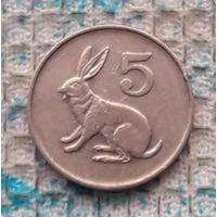 Зимбабве 5 центов 1991 года. Заяц. Инвестируй выгодно в монеты планеты!