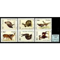 Фауна 1986 Польша Европейские Животные MNH**