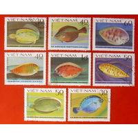 Вьетнам. Рыбы. ( 8 марок ) 1982 года.
