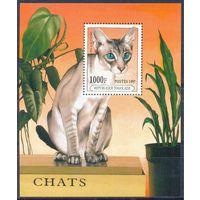 Того 1997 Фауна. Кошки, блок