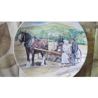 Тарелка - грабли для сена -20 см