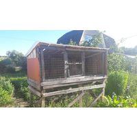 Клетка #4 для разведения кроликов, большая, самовывоз с дачного кооператива возле Жодино