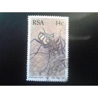 ЮАР 1987 жук