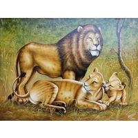 Картина маслом 39     львиная семья 60х80