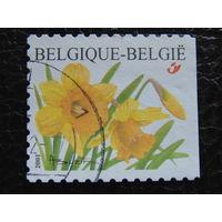 Бельгия 2001г. Флора.