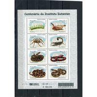 Бразилия. Институт Бутантан. Ядовитые змеи и насекомые. Малый лист