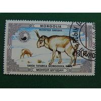 Монголия 1986г. Фауна.