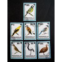 Монголия 1979 г. Птицы. Фауна. полная серия из 7 марок #0059-Ф1