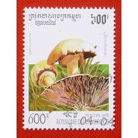 Камбоджа. Грибы. ( 1 марка ) 1995 года.