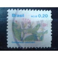 Бразилия 1989 Стандарт, цветы 0,20