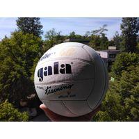 Волейбольный кожаный мячь Gala