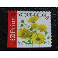 Бельгия 2005г. Флора.