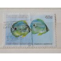 Багамы 1988 г. Рыбы.