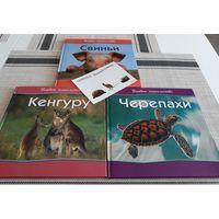 Лот красочных энциклопедий о животных