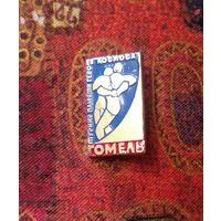 Знак Гомель Турнир памяти героев космоса